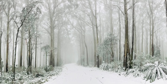australian mountains in winter